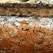 Soil / Mud / Mineral